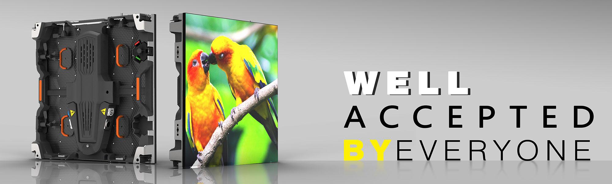 slider parrot